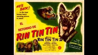 El retorno de Rin Tin Tin