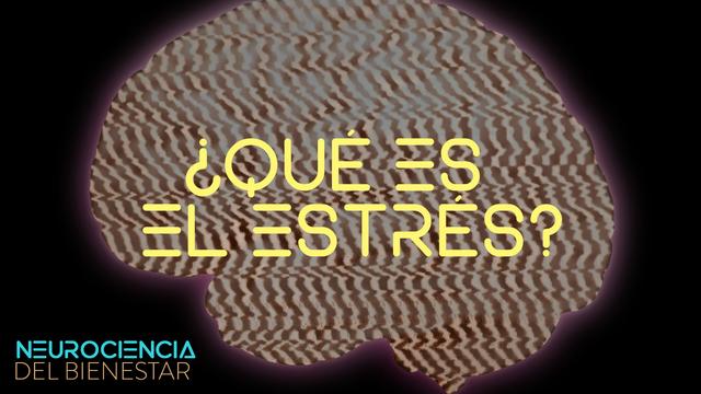 ¿Qué es el estrés?