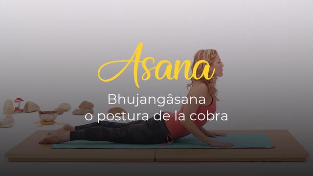 Bhujangasana o postura de la cobra