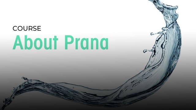 12 About Prana