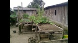 Comunidades sustentables (ecoaldeas), Colombia