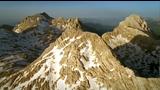 Alpes Calizos, un bosque de bosques