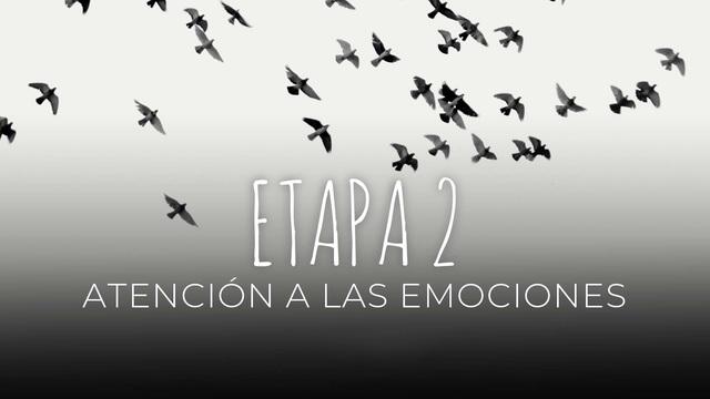 17 - Atención a las emociones