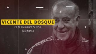 La entrevista con Vicente del Bosque