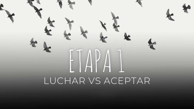 03 Luchar vs Aceptar