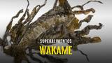 Superalimentos - Alga Wakame